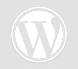 Bermain Judi Domino Online Lebih Aman Dan Menguntungkan
